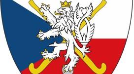 rozhodčí logo